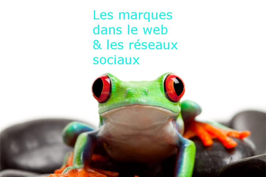 references-marques-web-redaction-seo-et-reseaux-sociaux-corine-malaquin-lyon